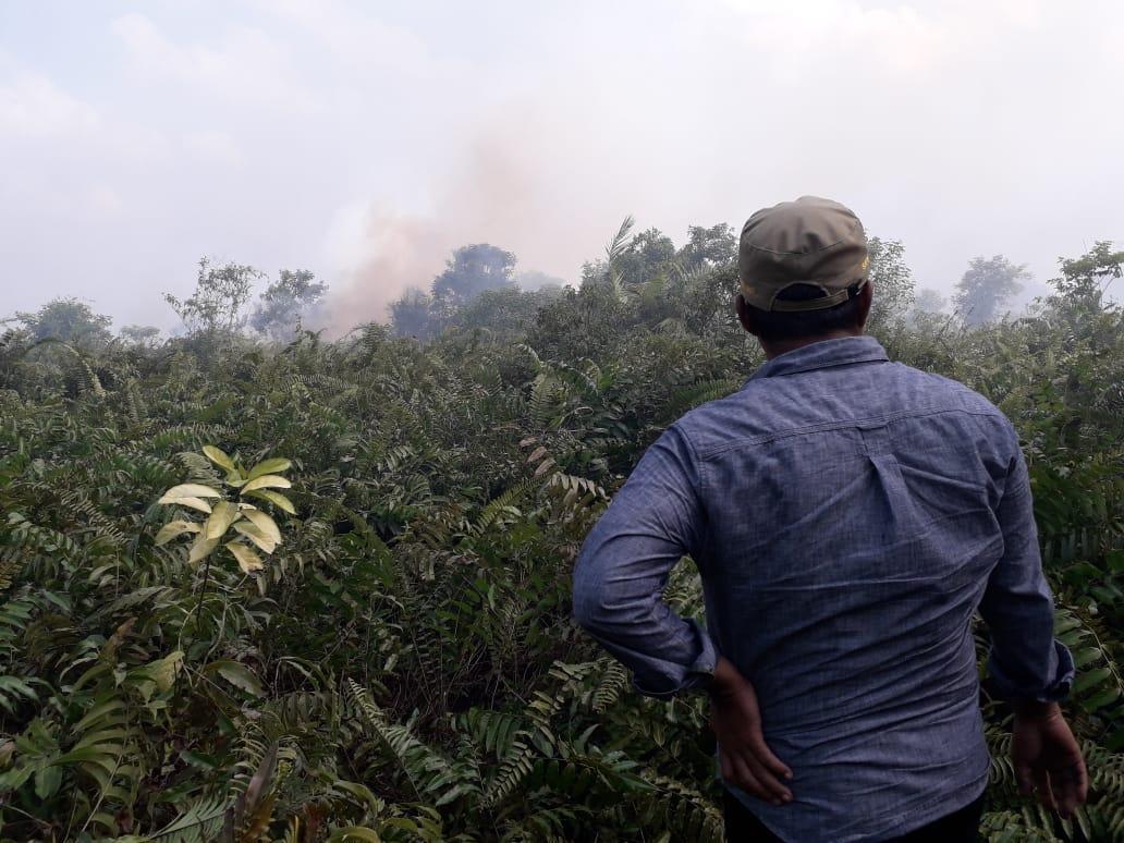 Bupati saat meninjau titik lokasi kebakaran di Kecamatan Dendang